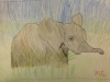 Elephant by Mia 5th Grade