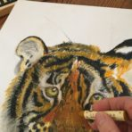 Oil Pastels – Grades 4 to 8
